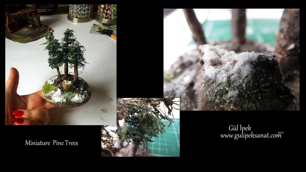 Miniature Pine Trees /Gül ipek 2017