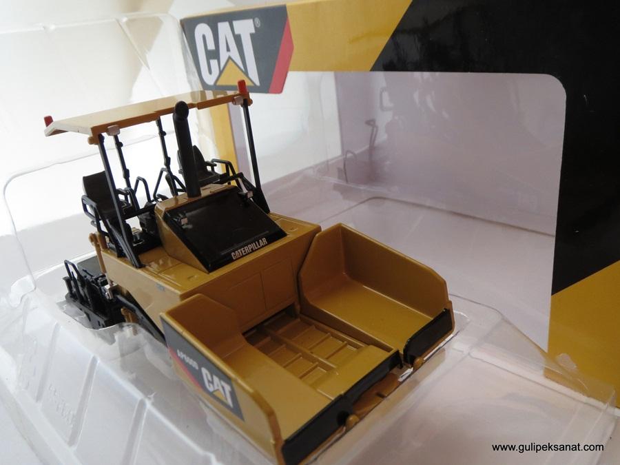 cat_dio_asfalt13 (67)