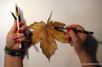 Paper /Autumn Leaves