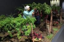 Üzüm Bağları Diorama