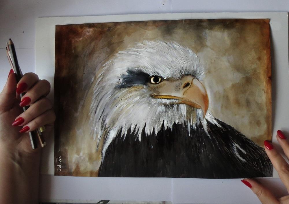 gulipeksanat_eagle