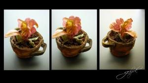 Saksıi çiçek ve yapraklar sadece mukavva ve kağıttan yapılmıştır .